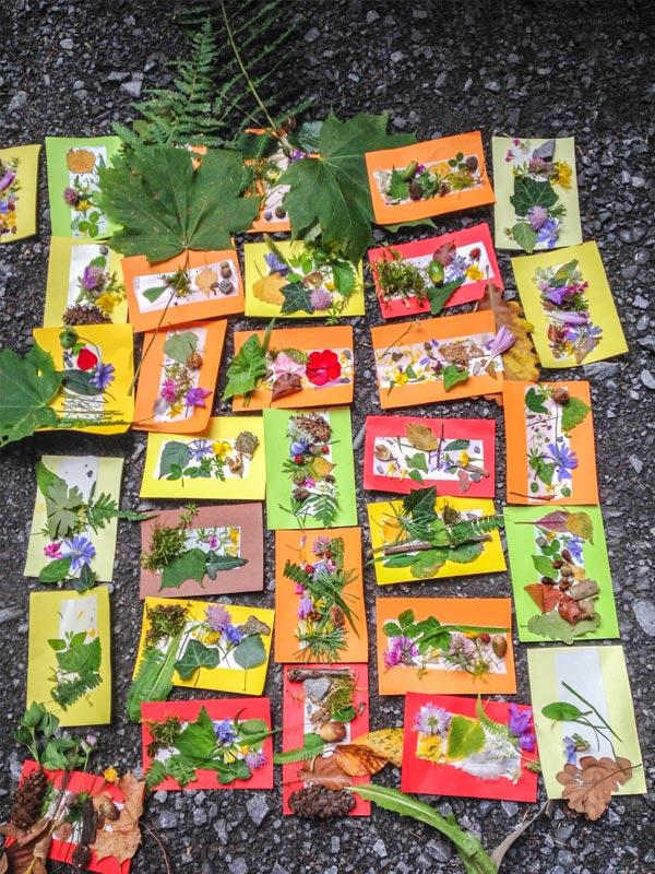 Naturführungen rund um Heidelberg und Umgebung. Naturschutzgebiete erkunden, Pflanzen & Bäume bestimmen, Wild- und Heilkräuter erkennen & verwenden